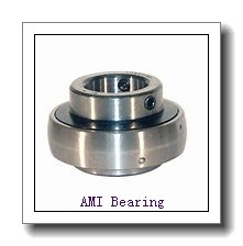 AMI BNFL8-24CEW  Flange Block Bearings