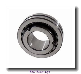 FAG 6306-2RSR-L038-C3 Bearings