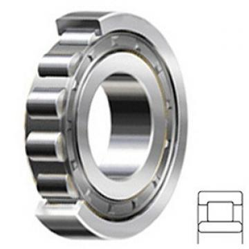 4.724 Inch | 120 Millimeter x 8.465 Inch | 215 Millimeter x 1.575 Inch | 40 Millimeter  CONSOLIDATED BEARING NU-224  Cylindrical Roller Bearings