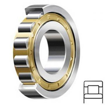 0.591 Inch | 15 Millimeter x 1.378 Inch | 35 Millimeter x 0.551 Inch | 14 Millimeter  CONSOLIDATED BEARING NU-2202E M  Cylindrical Roller Bearings