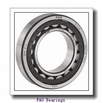 FAG 113HCDUM  Precision Ball Bearings